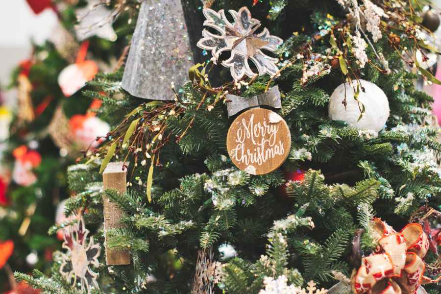 close up photo of christmas tree